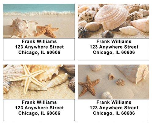 Seashells Address Labels ()