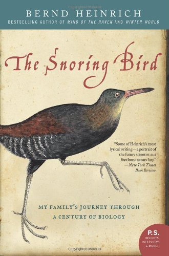 Snoring Bird Familys Journey Through ebook product image