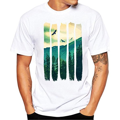 Howstar Mens T Shirt, The Eagle & Mountain Print Short Sleeve White Cool Tees for Man - Asian Eagle T-shirt