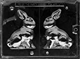 Cybrtrayd Life of the Party E100 5-Inch Bunny Easter Chocolate Candy Mold in Sealed Protective Poly Bag Imprinted with Copyrighted Cybrtrayd Molding Instructions