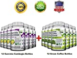 All-in-One Weight Diet Loss Pills & Appetite Suppressant Bundle w/Pure Green Coffee Bean Extract + Garcinia Cambogia Extract | Blocks Fat, Sugar, Carbs - 1440 Veggie Capsules - Gluten Free & Non GMO