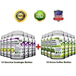 All-in-One Weight Diet Loss Pills & Appetite Suppressant Bundle w/Pure Green Coffee Bean Extract + Garcinia Cambogia Extract   Blocks Fat, Sugar, Carbs – 1440 Veggie Capsules – Gluten Free & Non GMO