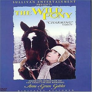 The Wild Pony (1983)