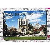 The world famous university souvenir Fridge magnets soft magnetic stick Yale university