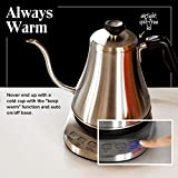 Gooseneck Electric Kettle with Temperature