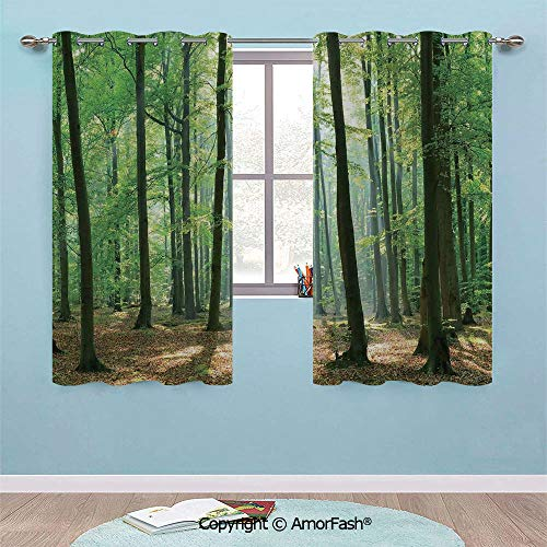 PUTIEN Small Window Blackout Treatment Thermal Insulated Drapes for Kitchen/Bedroom,38x45-Inch, Forest Morning Sun Beams in Natural Spring Forest from The Sky in a Sunny Day