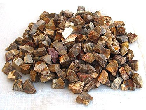 (Petrified Wood Gem Decor Rough - 1 LB Bag - Natural Crystals Perfect for Cabbing, Tumbling, Collecting, Healing )