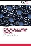 Predicción de la Ingestión de Aire en Squeeze Film Dampers, Jorge Torres, 3846574775