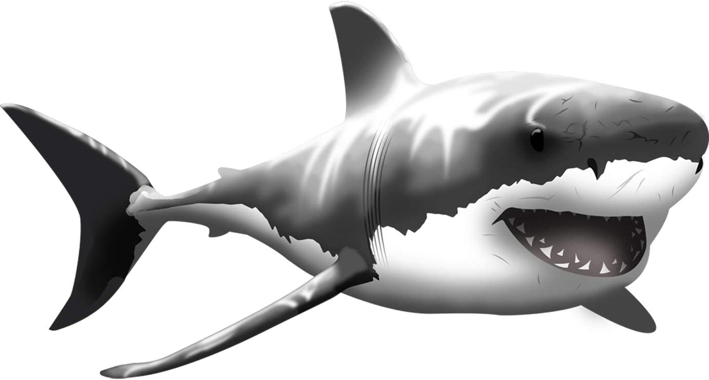 "VWAQ Giant Great White Shark Wall Decal Peel and Stick Wall Art … (13"" H X 24"" W)"