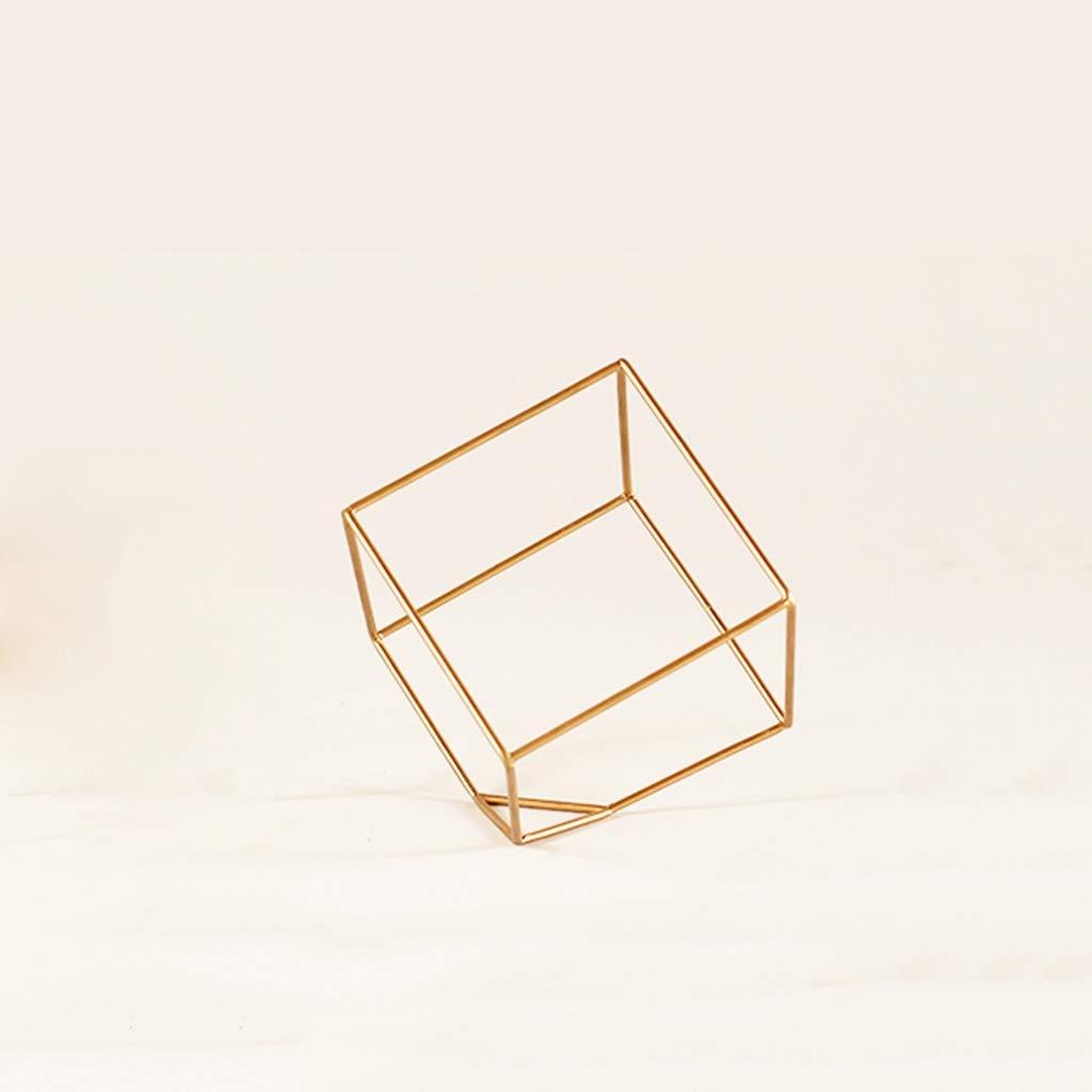 SHWSM Supporto per Piante di Ananas Aria Supporto per Piante Desktop per Cubi Materiale Metallico Resistente all'Usura E Anticaduta Stand di Fiori (Dimensioni   8×8×8cm)