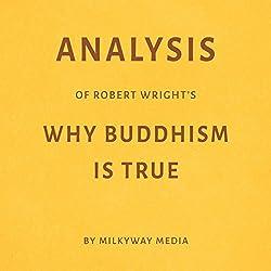 Analysis of Robert Wright's Why Buddhism Is True
