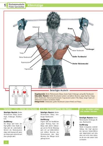 Kompaktkurs Rücken: Anatomie - Stretching - Muskeltraining: Amazon ...