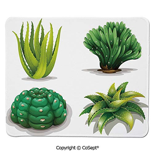 Gaming Mouse Pad,Aloe Vera Plants Cacti Rejuvenating Healing Herbal Spiny Collection,Non-Slip Water-Resistant Rubber Base Cloth Computer Mouse Mat (15.74