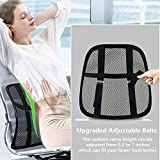 [Upgrade] Office Chair Back Support, Car Lumbar