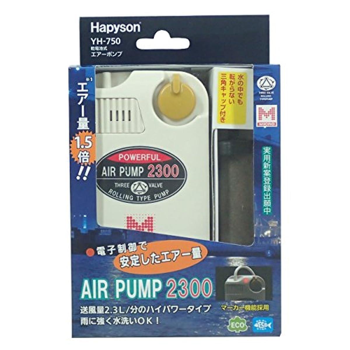 [해외] 해피손 YH-750 건전지식 에어 펌프마커 기능 첨부 2300