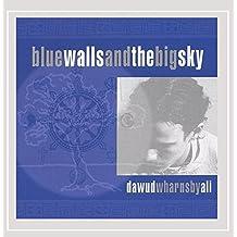 Blue Walls & the Big Sky