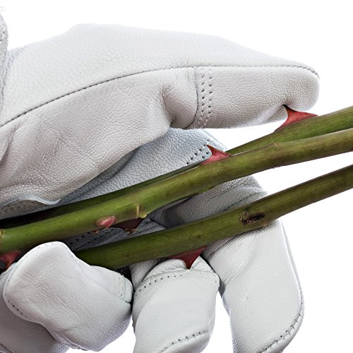 Professional Rose Pruning Garden Gloves - Luxurious Goatskin Leather with Reinforced Padding and Long Cowhide Suede Gauntlets - Flower Planting, Pruning, and Gardening Glove Gift Set - Womens, Small by COMPI