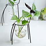 Flower Stand, Hydroponics Geometry Crystal Ball Transparent Glass Vase Container Iron Deer Frame Desktop Pot No Soil Cultivation Plant Family Gardening Bracket Decoration Indoor Hanging Bottle