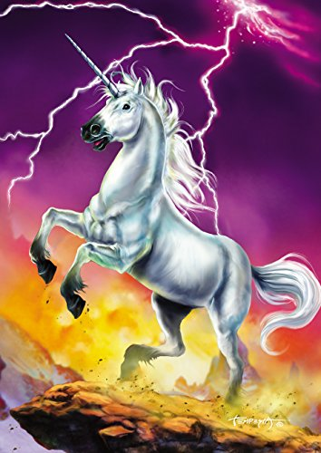 - Toland Home Garden Lightning Unicorn 28 x 40 Inch Decorative Fantasy Magical House Flag