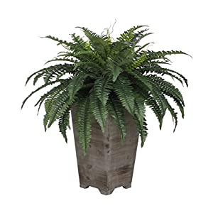 House of Silk Flowers Artificial Fern in Grey Wash Wood Planter 85