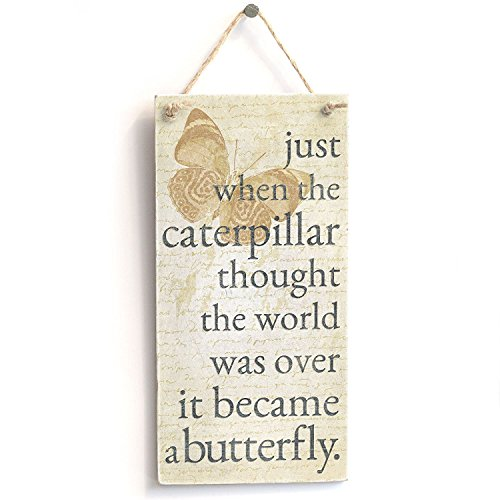 Meijiafei 'Just When The Caterpillar Thought The World Was Over It Became A Butterfly' Motivational Sign - Door Sign / Plaque 10