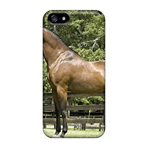 High Quality Shock Absorbing Case For Iphone 5/5s-indifel The Arabian