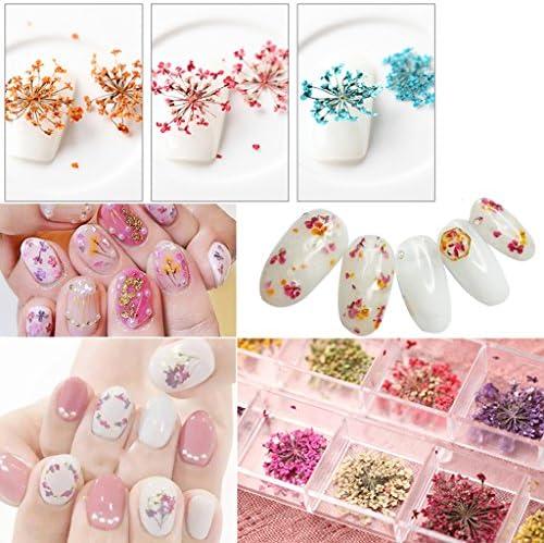 dailymall 6ピース押されたドライフラワー本物のニンジンの花の装飾DIY装飾ジュエリー作りキャンドル作り - ピンク