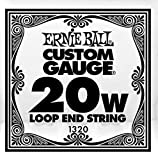 Ernie Ball P01320 (1320) .020 Loop End Stainless Steel Wound Banjo or Mandolin Guitar SINGLE String