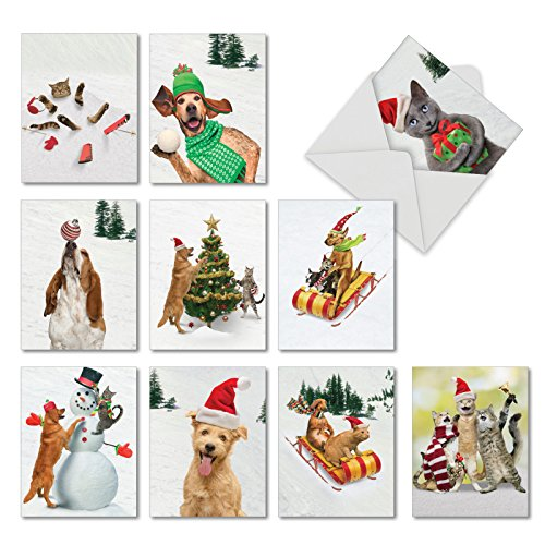 Animal Antics: 20 Assorted Seasons Greetings Note Cards Showing Cats and Dogs Frolicking in Holiday Dress, with Envelopes. AM1731SGG-B2x10 (Card Holiday Assorted)
