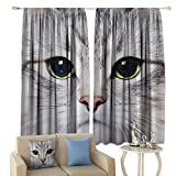 lovely traditional bathroom sinks cobeDecor Cat Decorations Gray Cute Cat Print Kitten Kitty Closeup Portrait Picture Digital Photography Lovely Pet Bathroom Insulated Sunshade Curtain Noise Reducing