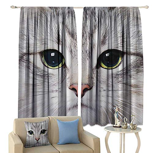 cobeDecor Cat Decorations Gray Cute Cat Print Kitten Kitty Closeup Portrait Picture Digital Photography Lovely Pet Bathroom Insulated Sunshade Curtain Noise Reducing