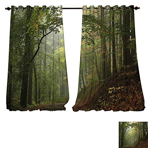 Youdeem-home Bedroom Curtain Forest,Misty Autumn Forest with Shaded Trees Foggy Dreamy Woodland Scene,Olive and Reseda Green Brown Country Curtain W108 x L108/Pair