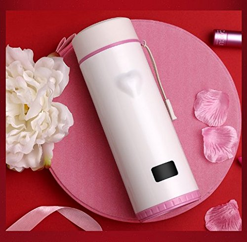SZCHENGCI Heart Temperature Touch Sensing Water Bottle Vacuum Insulated Cup Temperature Display Mug Tumbler For Home Office Travel (Pink)