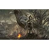 ☆☆☆☆☆ Dark Souls ダークソウル Action Role Playing Video Game RPG Solaire Of Astora Dragon Slayer Ornstein Executioner Smough Gravelord Nito Poster Large Print SALE ☆☆☆☆☆