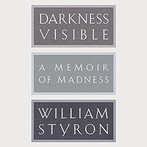 Darkness Visible Audiobook