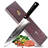 TUO Cutlery Ring D Series Japanese Damascus Chefs 8 inch kitchen knife - Premium AUS-10 High Carbon Damascus Stainless Steel
