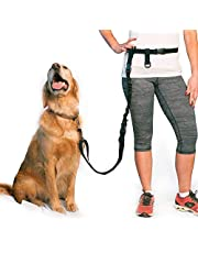 The Buddy System Adjustable Hands Free Dog Leash for Running, Jogging and Training Service Dogs Made in USA
