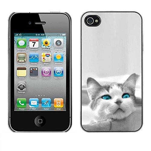 Housse Coque Hard Case étui Apple Iphone 4 / 4S The Blue Eye Cat / STRONG