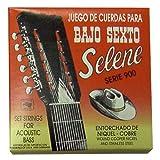 Paracho Elite BS900S Bajo Sexto 12 String Set