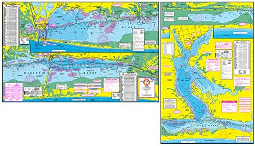 (Topographical Fishing Map of Lower Laguna Madre - With GPS Hotspots)