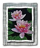 All My Walls Metal Wall Hanging 27.5h x 22w Contemporary Floral 'Water Lily' Steve Heriot