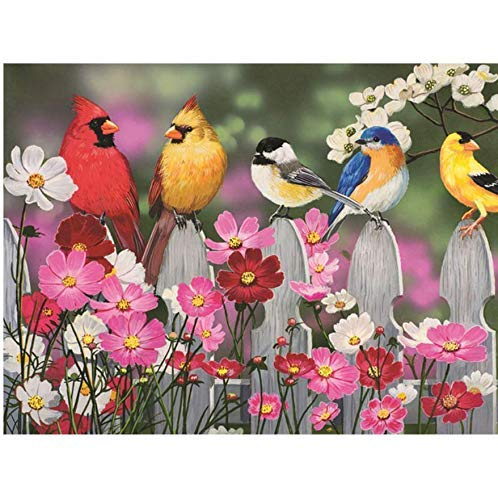 YueQiSong Round Diamond 5D DIY Diamond Picture Birds and Flowers Butterfly 3D Embroidery Cross-Stitch Animal Mosaic Icon Dec 30 40 - Icon Rubiks