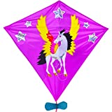 Diamond Kite for Kids and Adults, Single Line Easy to Fly Kite for Beginner,Funny Beach Toys and Outdoor Games