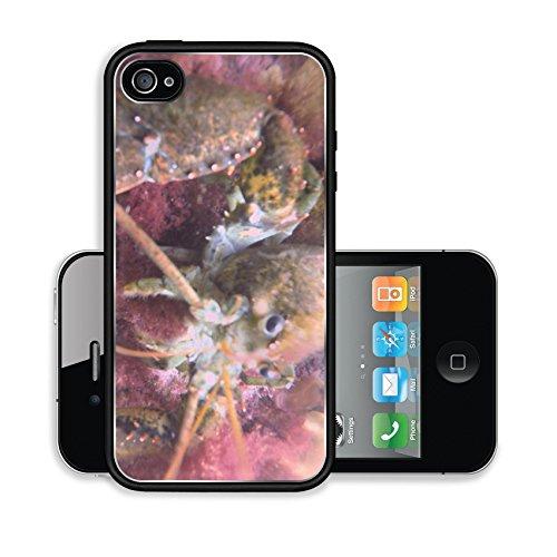 iPhone 4 4S Case Image 20669630591