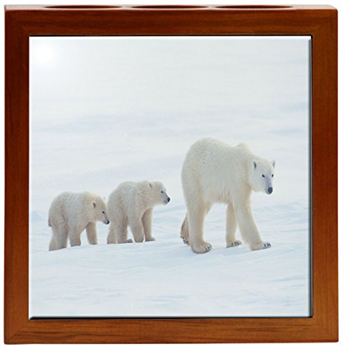 Rikki Knight 5-Inch Polar Bears Together Design Wooden Tile Pen Holder (RK-PH1611)