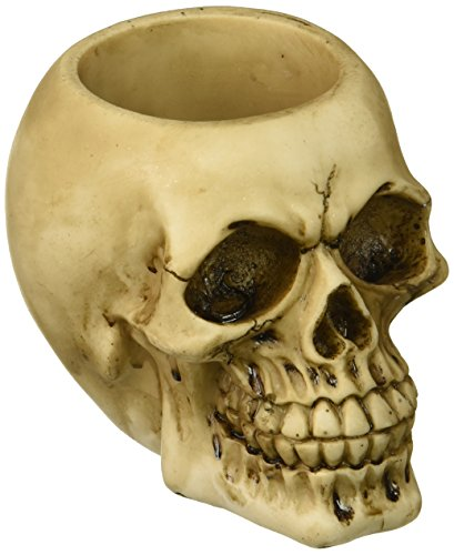 Zings & Thingz 57072975 Grinning Skull Pen Holder, Cream]()