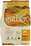 gather FREE ACRES Recipe Dry Dog Food – 16 LB. BAG For Sale