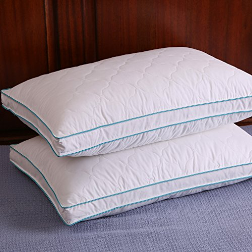 Down and Feather Pillow Bed pillows, Double Layered Fabric,