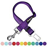 Blueberry Pet New Classic Solid Color Adjustable Dog Seat Belt Tether for Dogs Cats, Dark Orchid, Durable Safety Car Vehicle Seatbelts Leads Use with Harness