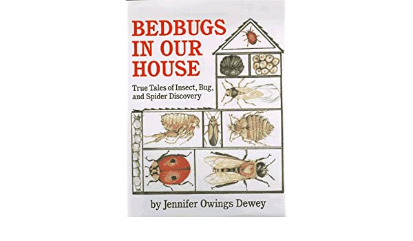 Bedbugs In Our House True Tales Of Insect Bug And Spider